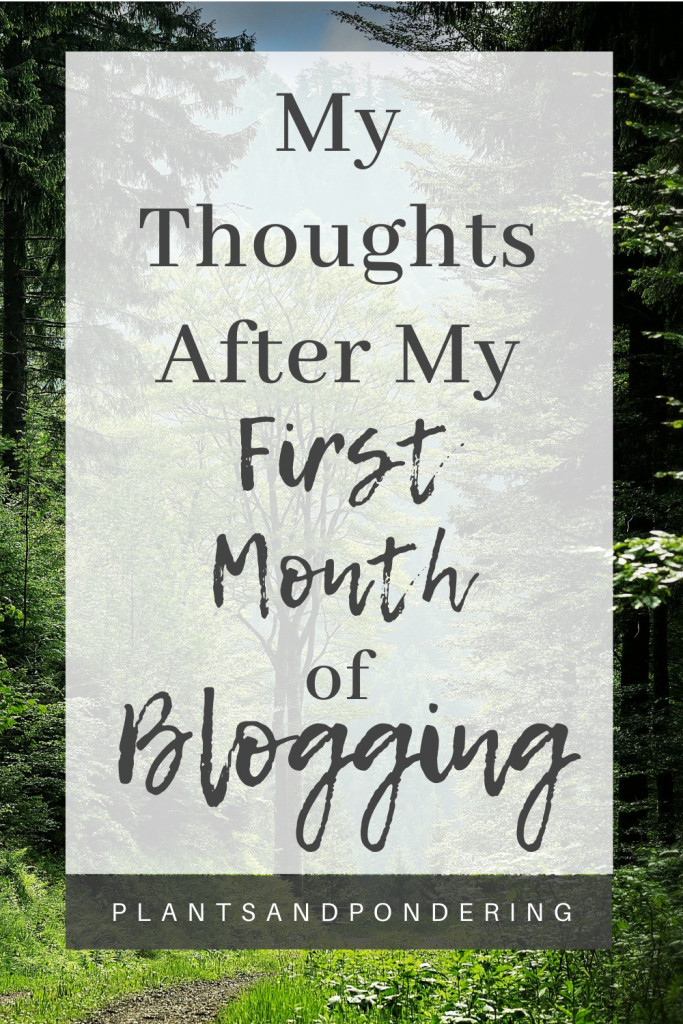 pinterest graphic for first month of blogging