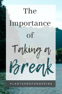 pinterest graphic for the importance of taking a break
