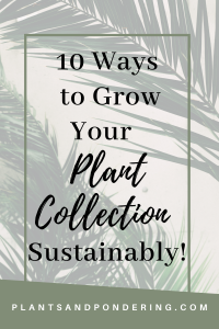 pinterest graphic for growing plant collection sustainably