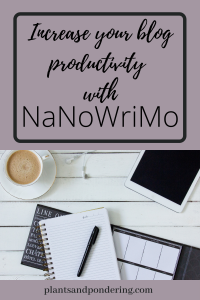 pinterest graphic for nanowrimo 2020